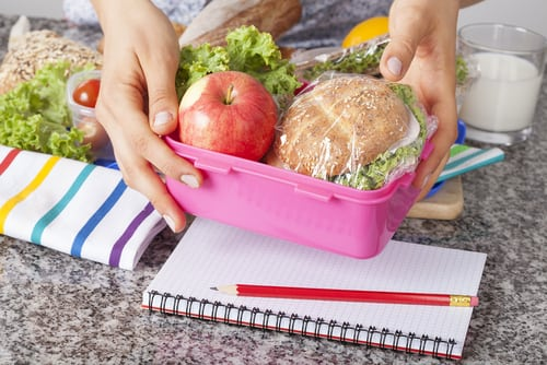 healthy food for your kids lunchbox